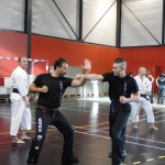 arts martiaux self defense mma krav maga karate shorinji kempo stage échange techniques