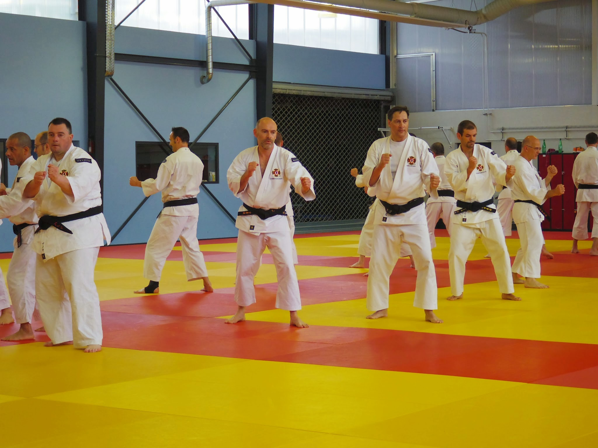 Stage_Professeurs_Shorinjikempo_2015-YBeyer-04