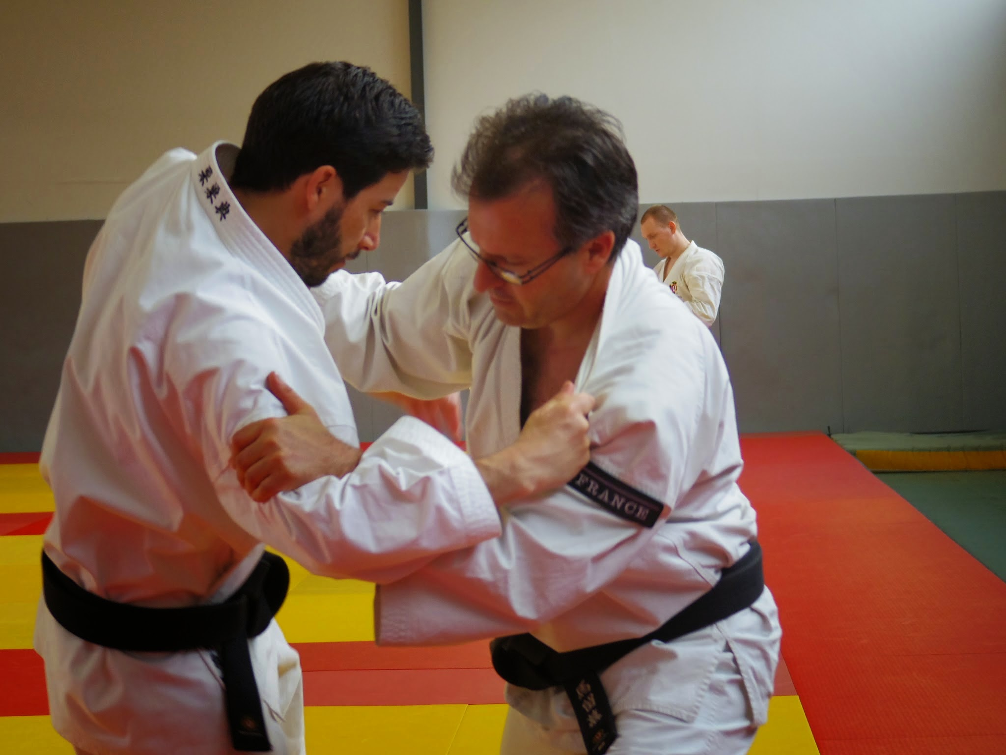 Stage_Professeurs_Shorinjikempo_2015-YBeyer-07